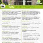 Windows Fact Sheet